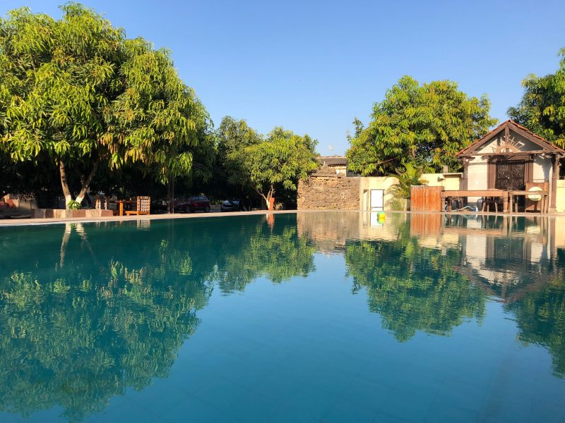 Gir Lions Paw Resort With Swimming Pool Market My Hotel 47 1